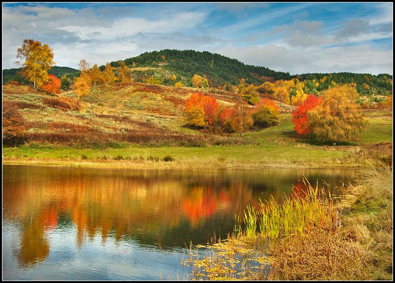 Отражения на есента