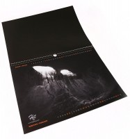 Хит Календар 2011